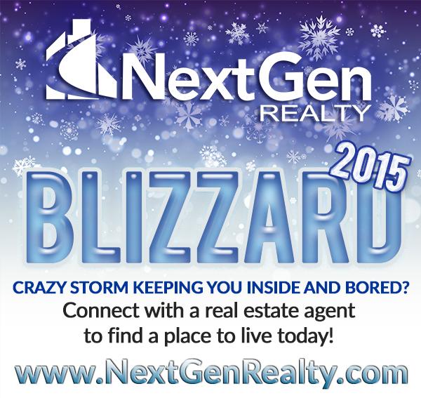 NetGen Realty Blizzard 2015 Juno Real Estate